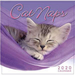 Sellers Publishing, Inc. Mini Cat Calendar