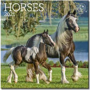 Ziga Media Mini Horse Calendar