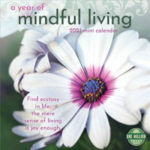 Sharon Salzberg Mini Year Calendar