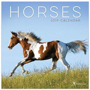 Visit Amazons Tf Publishing Page Mini Horse Calendar