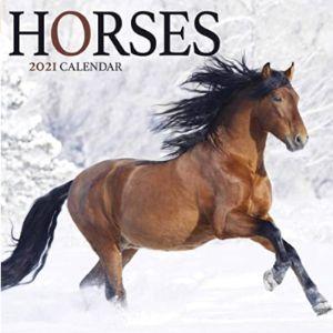 Horses Mini Horse Calendar