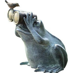 Spi Bird Flower Frog