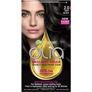 Garnier Hair Dyes Black Without Chemical