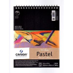 Canson Soft Pastel Pencil