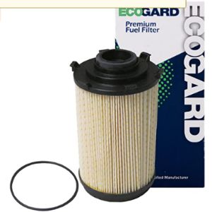 Ecogard Oil Filter Test
