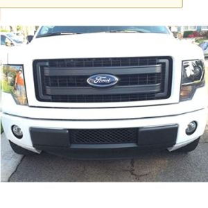 Ecoboost Grilles Ford F150 Grille Insert