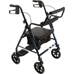 Visit The Roscoe Medical Store Rolling Walker Transport Chair