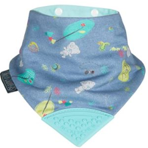 Cheeky Chompers Reversible Bandana Bib