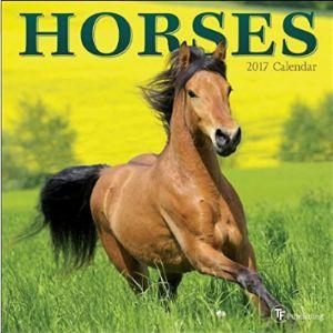 Tf Publishing Mini Horse Calendar