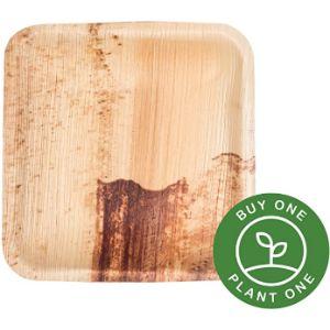 Clean Earth Goods Heavy Pressure Plate