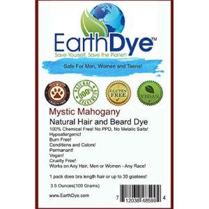 Earthdye Hypoallergenic Beard Dye