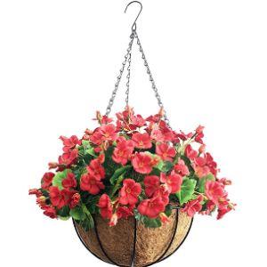 Lopkey Hanging Basket Flower Ball