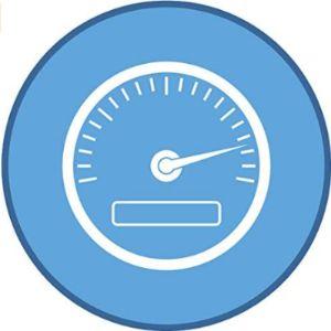 Shinobi Stickers Speedometer Sticker