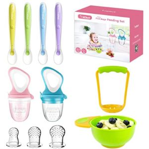 Michef Review Baby Fresh Food Feeder