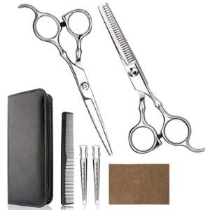 Himart Professional Hair Scissors Kit