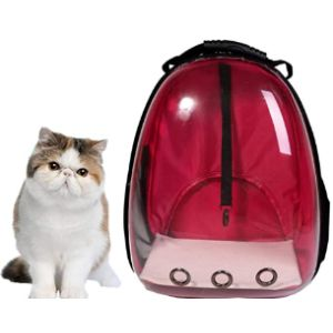 Lyns Pet Cat Backpack Carrier Bubble