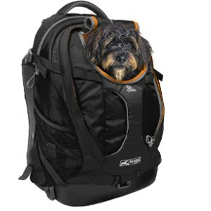 Kurgo Backpack Pet Carrier Airline Approved