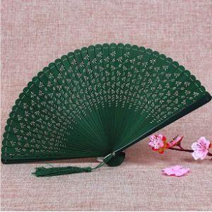 Aigial Plant Fan Flower