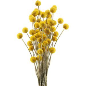 Huaesin Flower Ball Decor