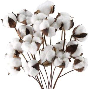 Domestar Cotton Bouquet Ball Flower