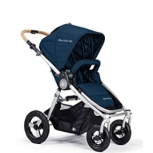 Bumbleride Reversible Stroller With Car Seats