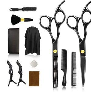 Visit The Fcnehlm Store Professional Hair Scissors Kit