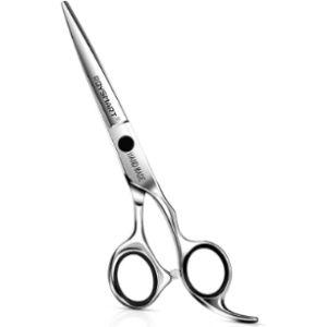 Roysmart Expensive Hair Cutting Scissors
