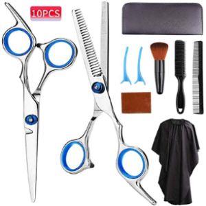 Aspior Professional Hair Scissors Kit