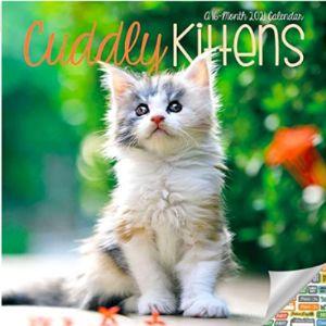 Date Works Mini Cat Calendar