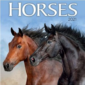 Turner Licensing Mini Horse Calendar