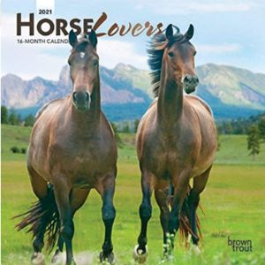 Browntrout Mini Horse Calendar