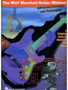Hal Leonard advanced  guitar methods