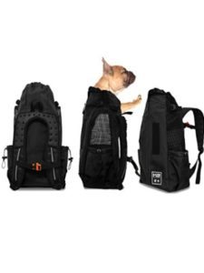 K9 Sport Sack corgi  backpack carriers