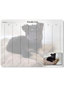 Acorn Printing custom photo  desk pad calendars