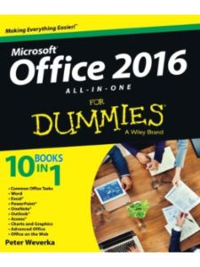 For Dummies formula  office words
