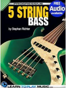 LearnToPlayMusic.com lesson  reggae music guitars