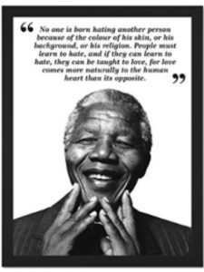 Wee Blue Coo light quote  nelson mandelas
