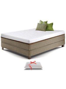 Live and Sleep mattress foam  truck beds