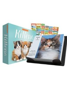 Trends International Calendars box calendar