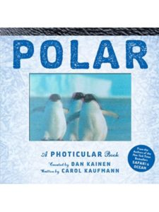 Workman Publishing Company polar  photicular books