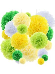 Azude wall art  tissue paper flowers