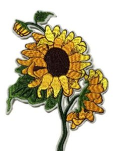 Athena Brands dune  fan flowers