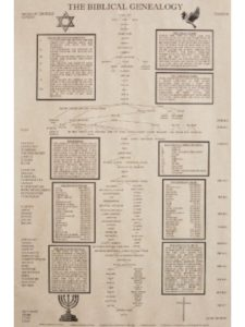 Shannon Roddy genealogy  timelines