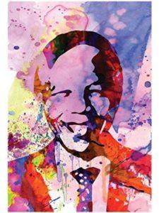 Poster Revolution image  nelson mandelas