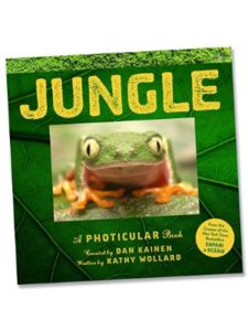 Fat Brain Toys jungle  photicular books