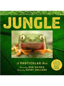 amazon jungle  photicular books