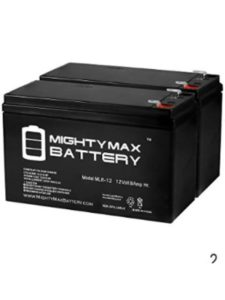 Mighty Max Battery electric razor