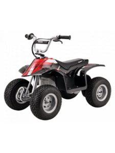 Pro-Motion Distributing - Direct quad bike  razor electrics