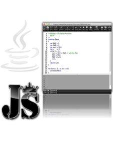 Neonway script  html editors