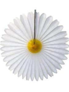 Devra Party    tissue paper daisies